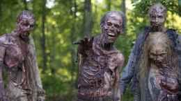 film-the-walking-dead