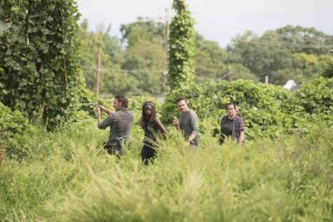 photos-promos-The-Walking-Dead-Saison-7-Episode-9-pic13