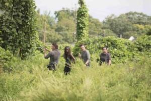 photos-promos-The-Walking-Dead-Saison-7-Episode-9-pic13